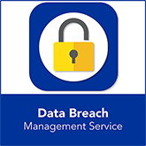 Data Breach Management Service