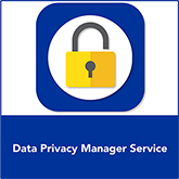 Data Privacy Manager Service | IT Governance USA